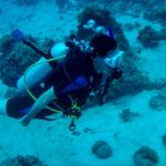Diving with Extreme Maldives, May 2017